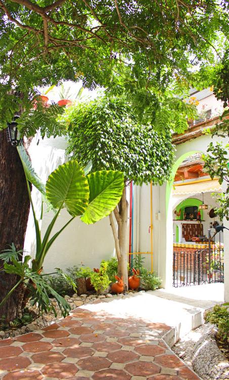 Hotel Las Mariposas Oaxaca